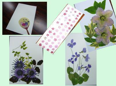 押し花教室_c0113948_17264771.jpg