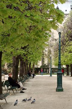 Paris * Day Four_f0057564_12481414.jpg