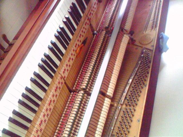 ピアノの調律_c0149987_1316353.jpg