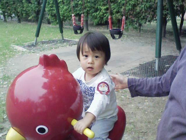 なごみの笑顔_c0066693_13325540.jpg