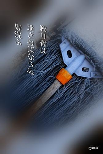 f0053297_9504866.jpg