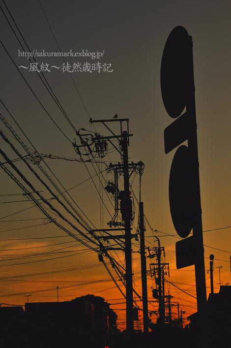 f0235723_20112128.jpg