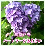 d0020139_1341348.jpg