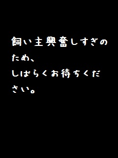 c0034743_1141061.jpg
