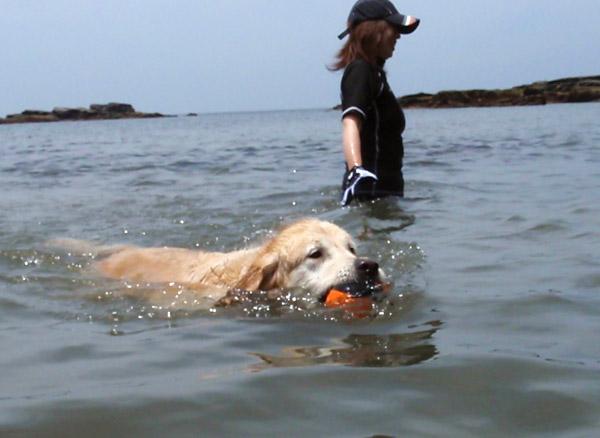 前々から約束ちてた海遊び♪〜_c0110361_1630023.jpg