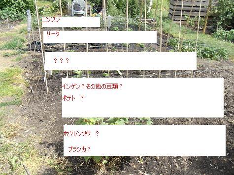 c0169179_7133526.jpg