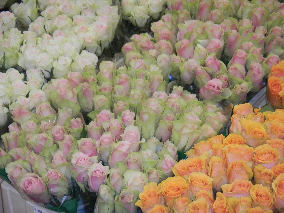 パリ お花市場 「 ランジス 」_c0195496_22101924.jpg
