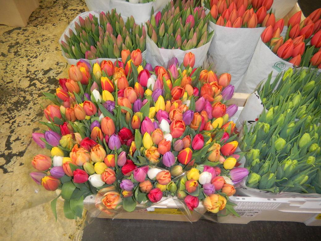 パリ お花市場 「 ランジス 」_c0195496_2222474.jpg