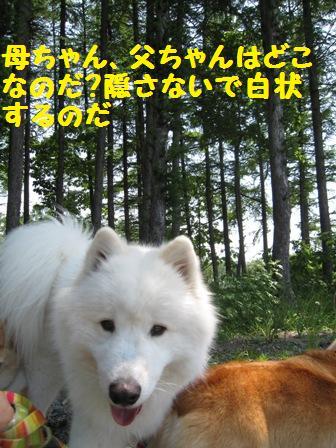 f0212597_14523769.jpg