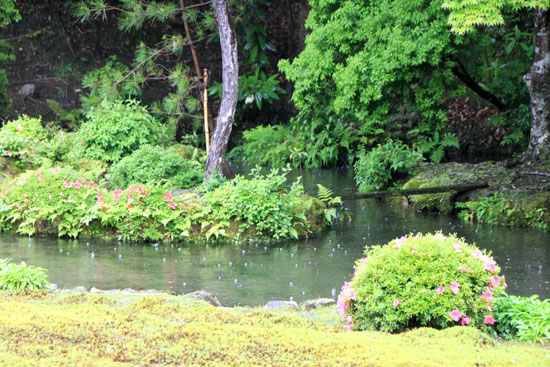 雨の南禅院_e0048413_9591229.jpg
