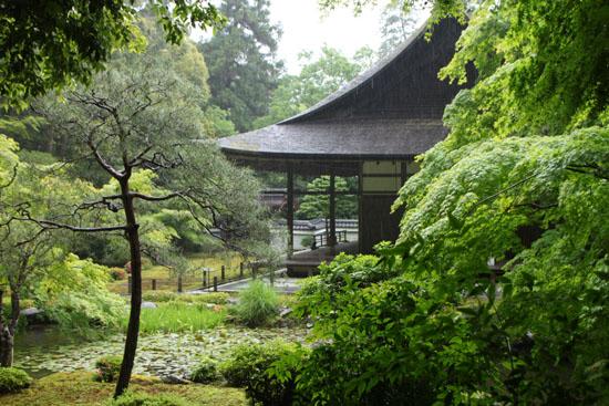 雨の南禅院_e0048413_9592487.jpg