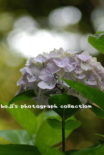f0151417_0252856.jpg