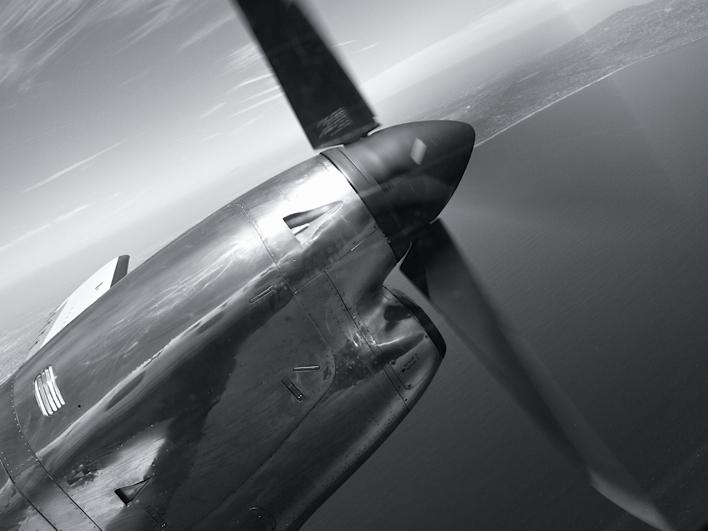 taking off_b0173730_2357898.jpg