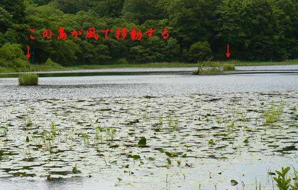 f0154940_9193279.jpg