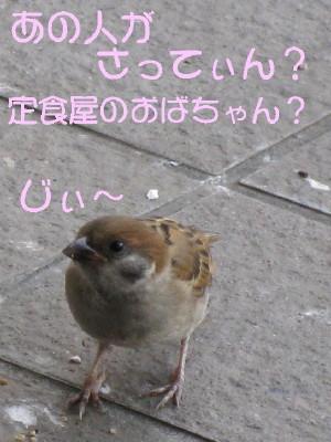 b0158061_1637364.jpg
