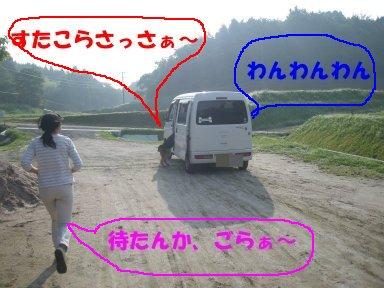b0113663_9123423.jpg