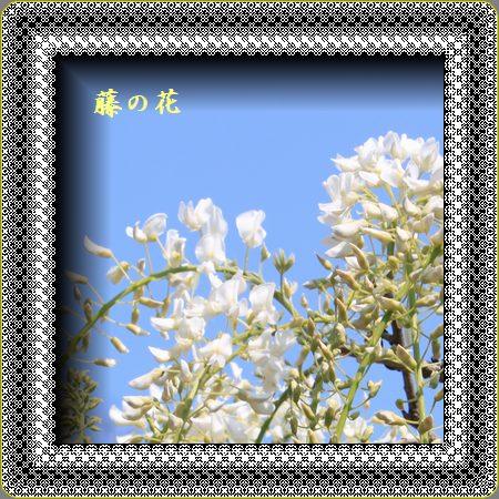 b0186069_17322620.jpg