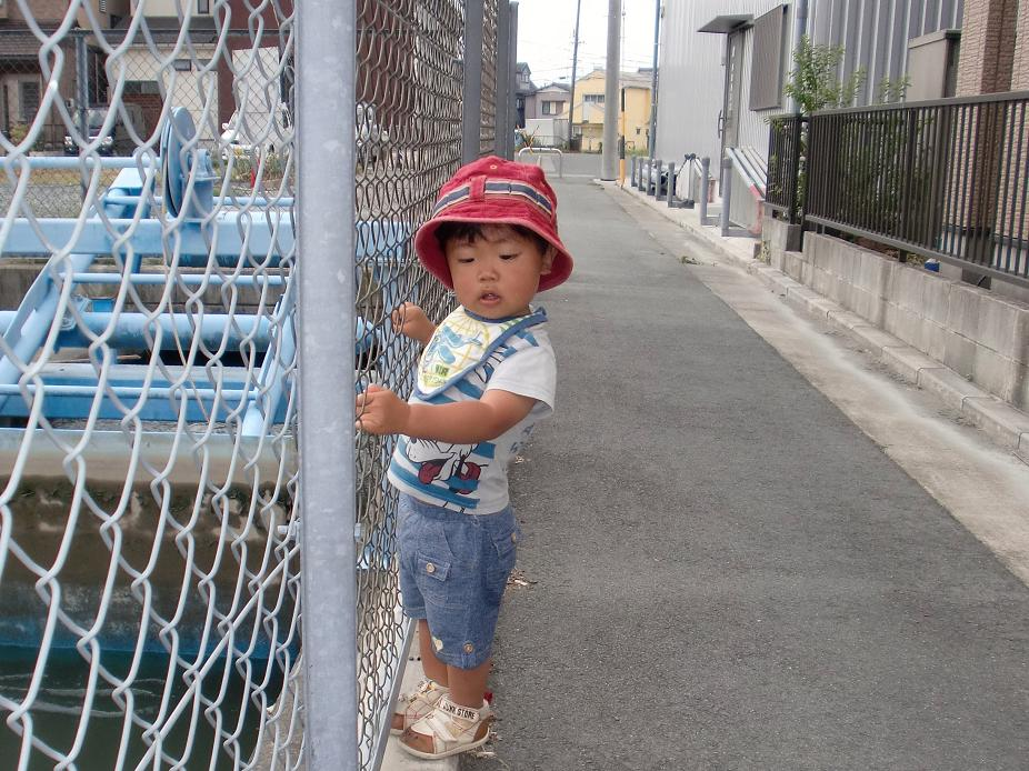 2010年浜松② あっくん_b0018885_15265966.jpg