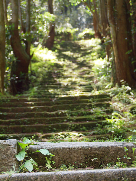 f0180607_161811.jpg