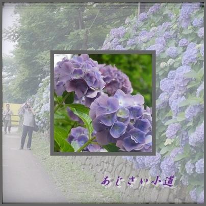 c0223117_17281131.jpg
