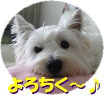 f0084422_164215.jpg
