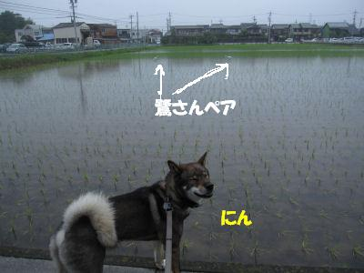 f0143123_19453157.jpg