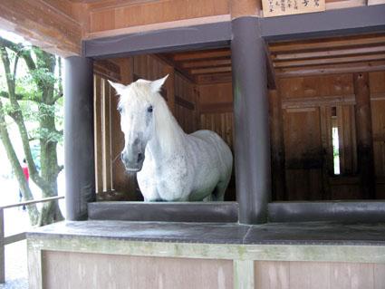 子安神社_f0129726_2242714.jpg
