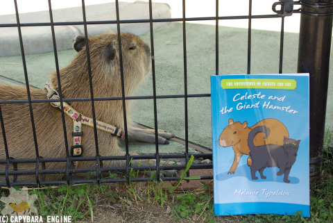 How (not) to be reading capybara_f0138828_19583463.jpg
