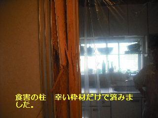 f0031037_2123838.jpg