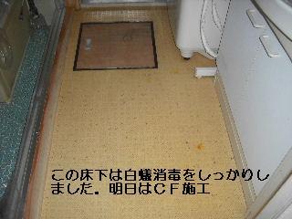 f0031037_21261912.jpg