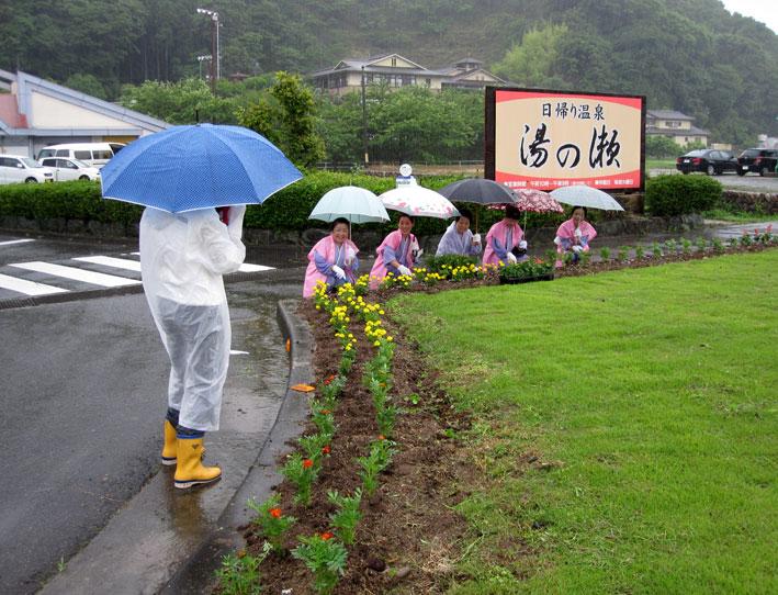 夏花の植栽_b0145257_12404794.jpg