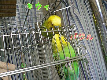 f0196665_23405773.jpg