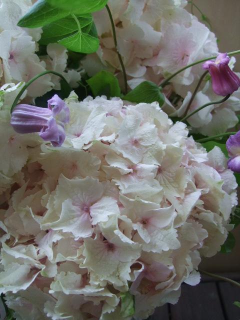 オークリーフ(大輪紫陽花とクレマチスのアレンジメント、シノワな器に)_f0049672_12532046.jpg
