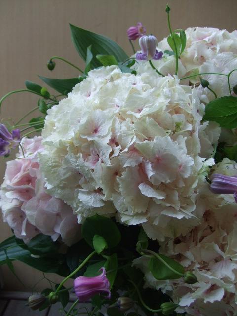 オークリーフ(大輪紫陽花とクレマチスのアレンジメント、シノワな器に)_f0049672_125329100.jpg