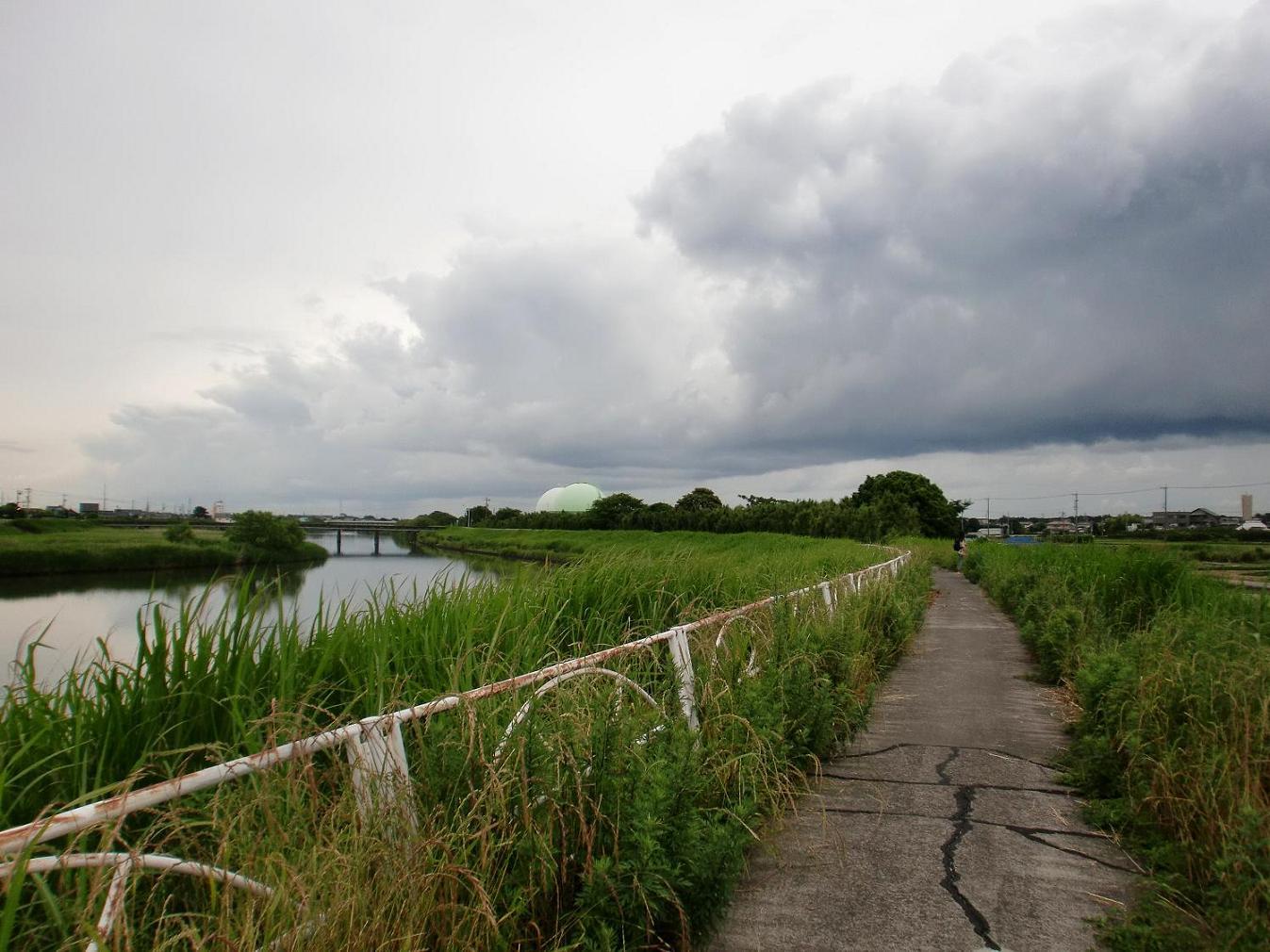 2010年浜松③ 海へ(雨中遠征)_b0018885_11144278.jpg