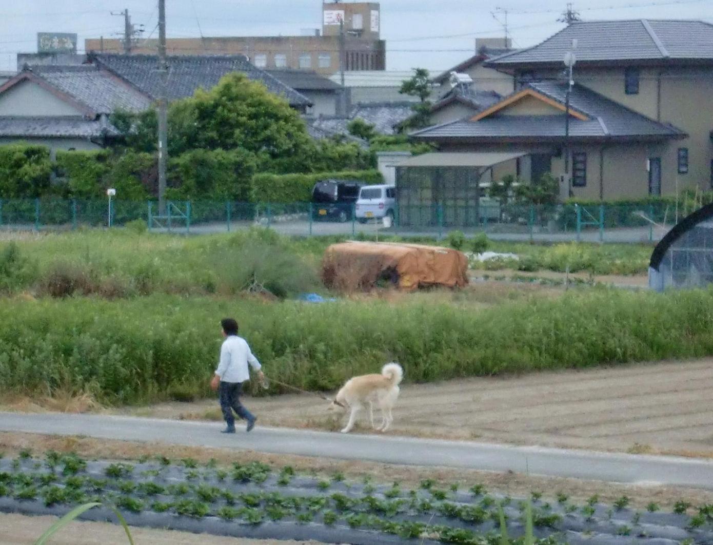 2010年浜松③ 海へ(雨中遠征)_b0018885_12531850.jpg