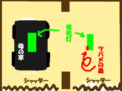 f0164499_833330.jpg