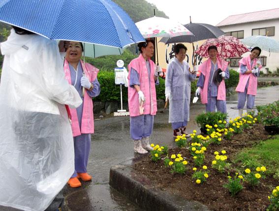 夏花の植栽_b0145257_714991.jpg