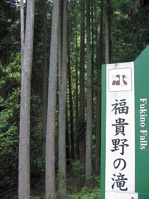 """""""滝見""""遊山(その2):新緑の""""巌流""""・・・富貴野の滝_c0001578_10562734.jpg"""