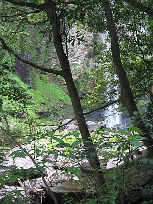 """""""滝見""""遊山(その2):新緑の""""巌流""""・・・富貴野の滝_c0001578_10571520.jpg"""