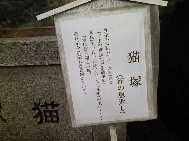 キャラバンちゅう~_d0140490_12391214.jpg