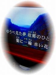 f0175804_20284236.jpg