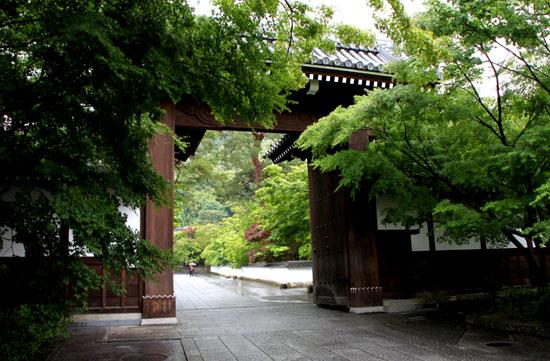 永観堂の雨_e0048413_183419.jpg