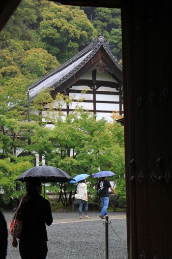 永観堂の雨_e0048413_18373080.jpg