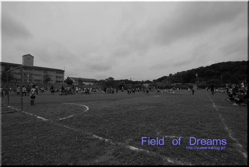 Field of Dreams_f0156117_1872612.jpg