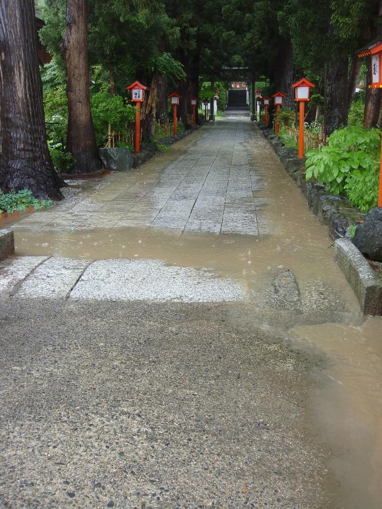 大雨_c0111229_18203890.jpg