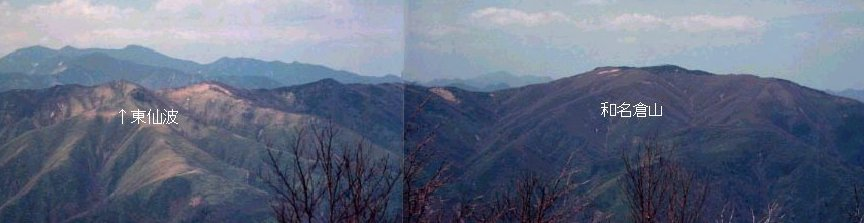 <2010年6月12日>奥秩父の遥かなる幽寂峰「和名倉山」 (リベンジ登山)_c0119160_21283521.jpg
