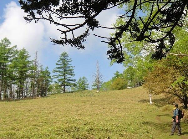 <2010年6月12日>奥秩父の遥かなる幽寂峰「和名倉山」 (リベンジ登山)_c0119160_21522785.jpg