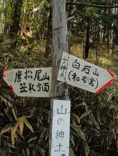 <2010年6月12日>奥秩父の遥かなる幽寂峰「和名倉山」 (リベンジ登山)_c0119160_226422.jpg