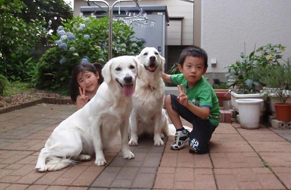 夕方毎日のように遊びにきてくれる小さなお友だち♪〜_c0110361_15524077.jpg